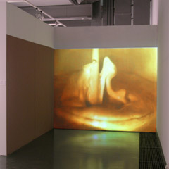 """Qui vive"", National center for contemporary arts Moscow, 2005, untitled, video (3min, looped), wallpaint, 2005"